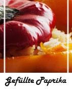 Gefullte Paprika Hcg Diaet Rezepte